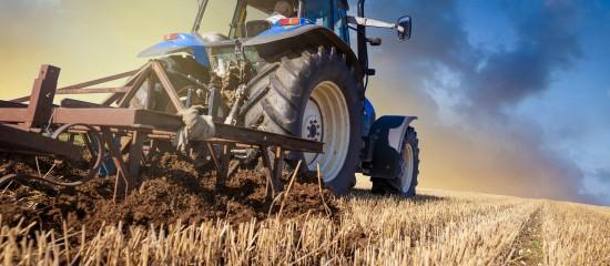 Droit de préemption de l'agriculteur: quand le domaine mis en vente est indivisible