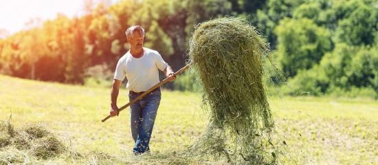 Exploitants agricoles: montant des indemnités journalières
